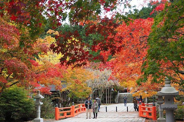 高野山の紅葉の見頃は10月下旬から11月上旬