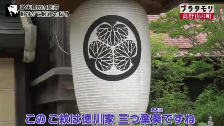 徳川家の家紋の提灯