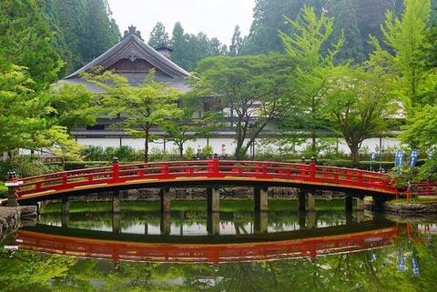 蓮池の赤橋